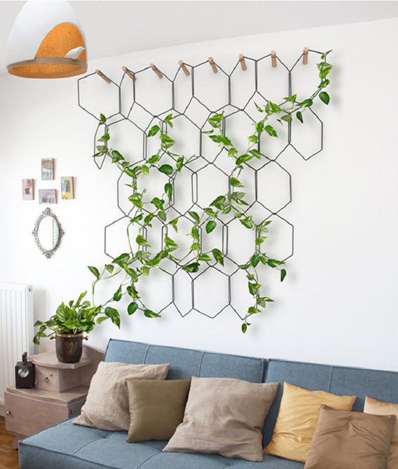 How to Decorate Your House with Green Plants