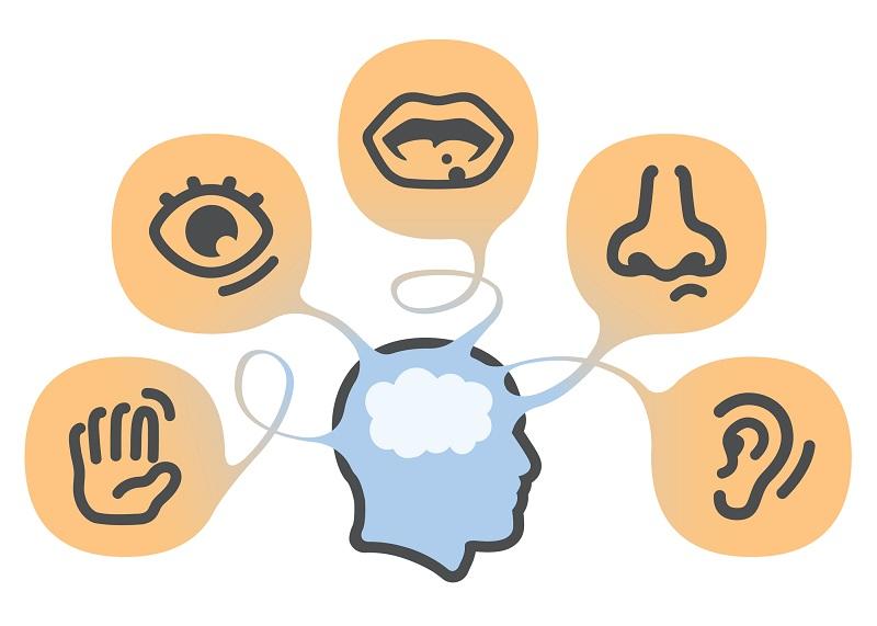 What Is Sensory Marketing?